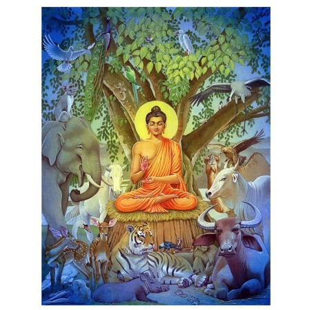 animals.buddha